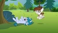 Pipsqueak excitedly shaking his hooves S7E21