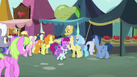 Ponies gather in front of Grand Pear's jam stand S7E13
