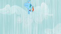 Rainbow Dash flying down S2E08