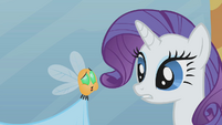 Rarity looking at belching parasprite S1E10