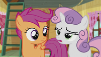"Sweetie Belle ""We've run out of ideas"" S5E18"