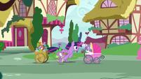 Twilight and Spike race toward Sugarcube Corner S7E3