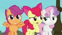 "Apple Bloom ""can I ask now?"" S8E6"