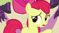 Apple Bloom says she has to go the bathroom S5E17.png