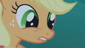 Applejack tells Twilight to let go S1E02.png