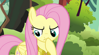 "Fluttershy thinking ""that does explain the paper eating"" S03E10"