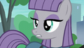 Maud Pie in flat surprise S6E3.png