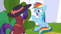 Rainbow Dash -how is this perfect-!- S9E4