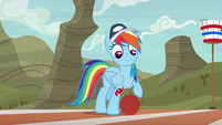 Rainbow Dash standing with a buckball S9E6