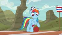 Rainbow Dash standing with a buckball S9E6
