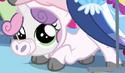 Sweetie Belle little piggy costume ID S3E4
