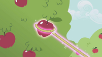 Trixie lassoes an apple S1E06