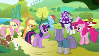 Twilight introduces Rarity to Maud S4E18