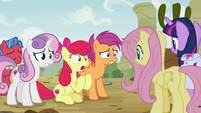 "Apple Bloom ""I know you're not gonna believe"" S9E22"