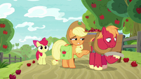 Applejack tells Big Mac to get to work S9E10