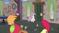 Big Mac and Apple Bloom building and painting frantically S7E8.png