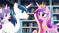 "Cadance ""but we should evacuate the city just in case!"" S6E2.png"