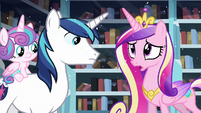 "Cadance ""but we should evacuate the city just in case!"" S6E2"