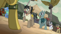 Daring Do appears in front of Caballeron and henchponies S7E18.png