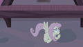 """Fluttershy """"Oh, no"""" S5E02.png"""