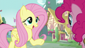"""Fluttershy """"you would bring some snacks to the castle"""" S5E19.png"""