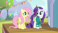 Fluttershy 'are really gonna make the Ponyville Pet Center fundraiser' S4E14.png
