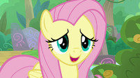 Fluttershy -it won't hurt anypony- S8E23