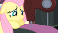 Fluttershy sewing S4E08.png