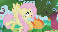 Fluttershy with the flowers S1E3