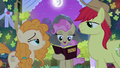 Mayor Mare officiates Mac and Butter's union S7E13.png