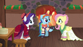 Merry, Snowdash, and Flutterholly talking together S6E8.png
