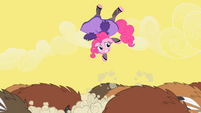Pinkie Pie tossed into the air by the buffaloes S1E21