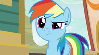 Rainbow still doesn't believe Quibble S9E6