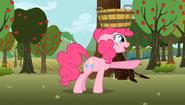 S02E15 Pinkie z koszem na głowie