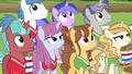 Unicorns listening to Rainbow Dash S6E18.png