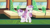 Young and adult Sweetie Belle side-by-side S9E22