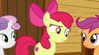 "Apple Bloom ""are you two thinkin' what I'm thinkin'?"" S7E21"