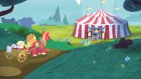 Applejack and Big Mac walking towards the tent S4E20