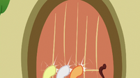 Crusaders knocking on Fluttershy's door S6E15