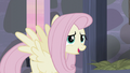 """Fluttershy """"everypony's so nice"""" S5E02.png"""