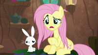"Fluttershy ""is this what you meant"" S9E18"