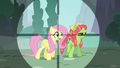 Fluttershy in Discord's crosshairs S5E7.png
