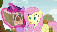 Fluttershy looking in wide-eyed surprise S9E22
