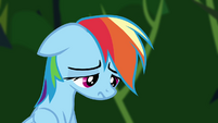 Rainbow Dash dejected S4E04