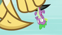 Roc pecking its beak on Spike's head S8E11