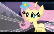 S04E16 Fluttershy jako zefirek