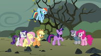 """Twilight """"how much we all love Pinkie Pie"""" S4E18"""