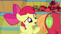 """Apple Bloom """"before I get too old"""" S9E10"""