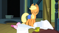 Applejack 'Y'all are gonna get along great' S3E4.png