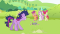 CMC all eyes on Smarty Pants S2E03.png